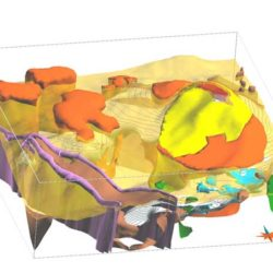 3D-Geological-Modeling-3